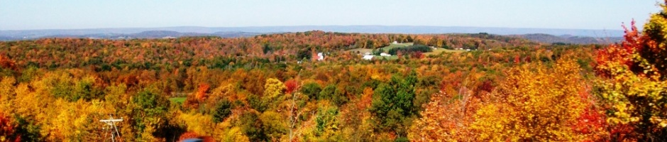 2012 Fall Foliage Header