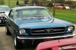 Al & Barb-1964 1/2 Coupe