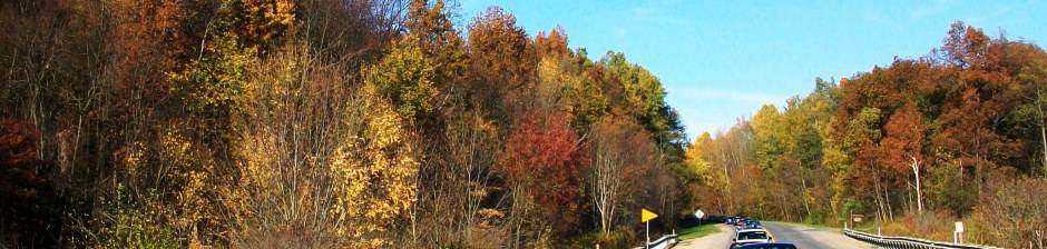 2011 Fall Foliage Featured Image
