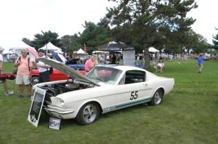 Members Cars (4)