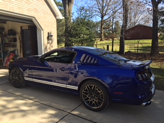 MarkW-2013-Shelby-GT500